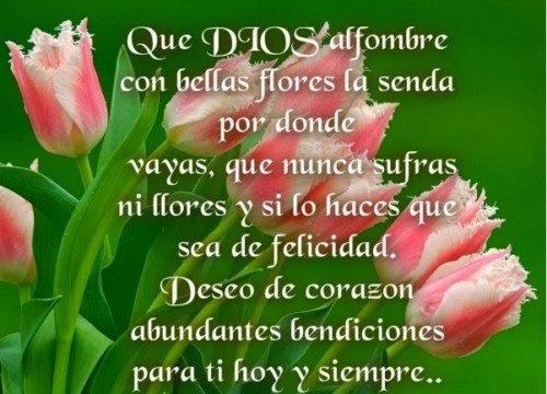 bellasflores5