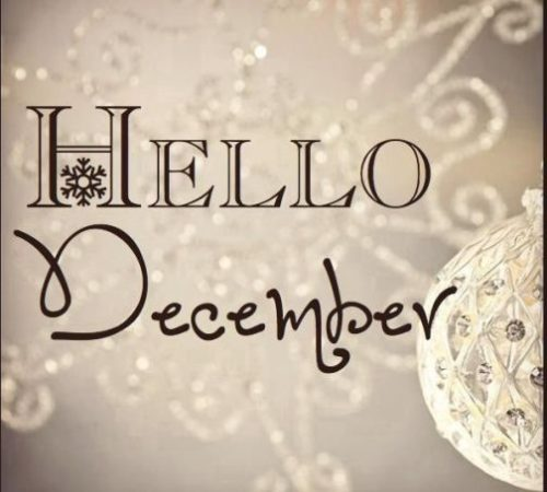 bienvenidodiciembre38