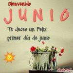 Imágenes bellas con lindas palabras para decir Hola junio y bienvenido junio
