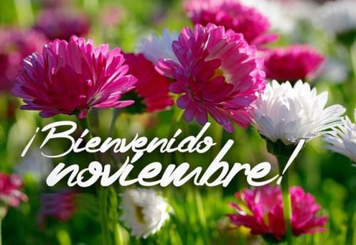 Im genes bonitas con frases para darle la bienvenida la mes de noviembre todo im genes - Mes noviembre 2017 ...