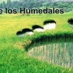Convenio sobre los humedales o Ramsar
