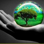 Por que el dia de la naturaleza se celebra el 3 de marzo?