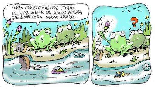 humedales2