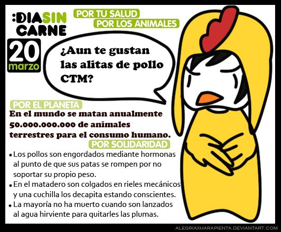 Postales y frases dia mundial sin carne en colombia 20 de marzo 2013 06