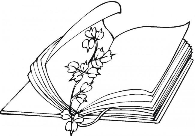 dia-del-libro-para-colorear-dIadellibrodibujo