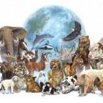 El dia del animal: Todo imágenes para descargar de mascotas y mensajes para eñl 29 de abril
