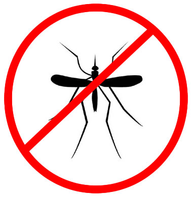 malaria-mosquito112