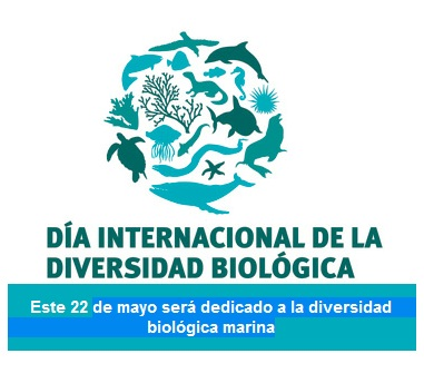 Dia-Internacional-de-la-Diversidad-Biologica