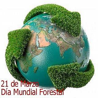 dia-forestal-mundial