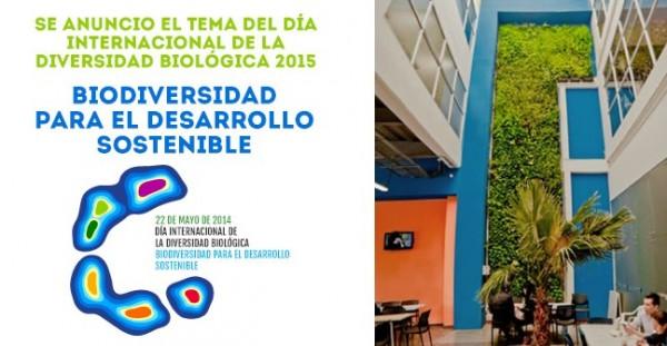 dia-internacional-la-biodiversidad-biologica-2015-648x336