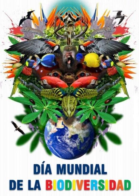 dia-mundial-biodiversidad-1[1]