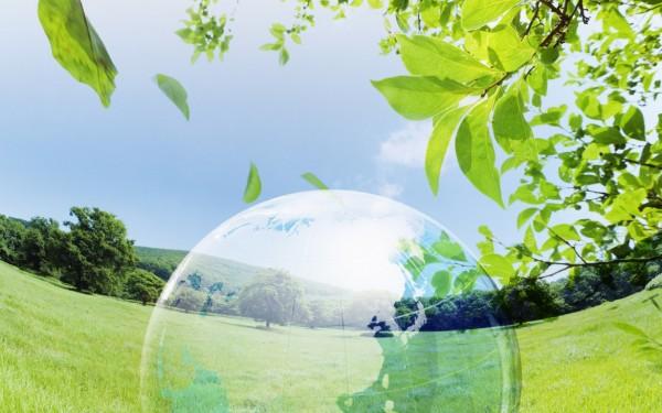 dia-mundial-del-medio-ambiente[2]