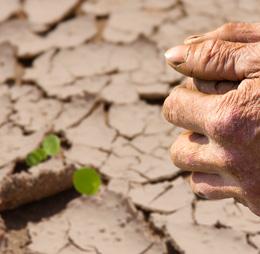 17-de-junio-dia-mundial-de-la-lucha-contra-la-desertificacion-y-la-sequia