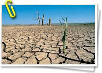 desertif