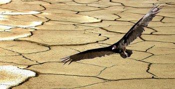 desertificacion01