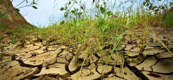 desertificacion_MAYO600pix