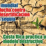 Que es el el Día Mundial de Lucha contra la Desertificación y la Sequía?