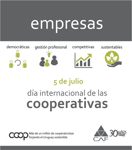 mailing_CAF_Dia_Internacional_de_las_Cooperativas_2014