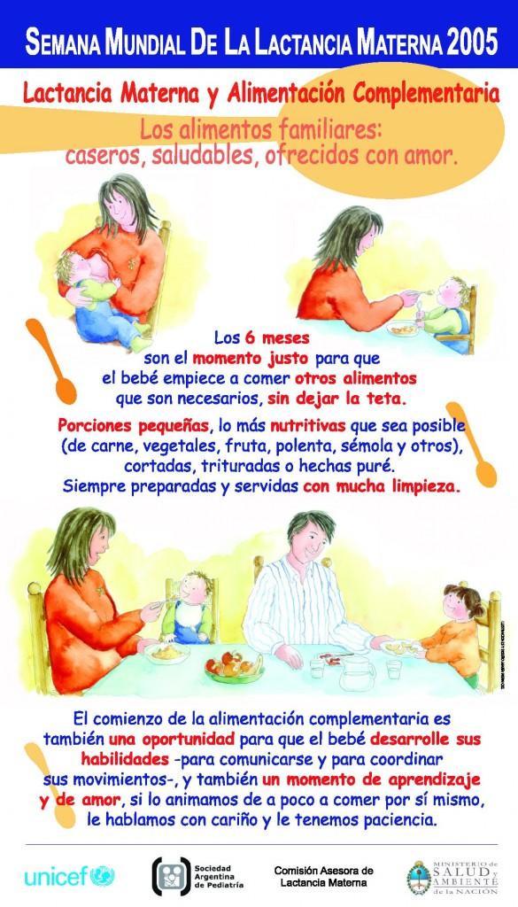 Afiche_SMLM_2005