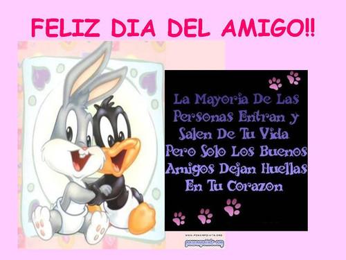 amigo11