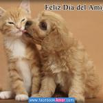 Imágenes tiernas de animales con frases del Día del Amigo