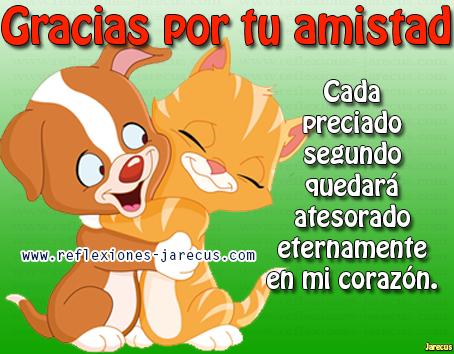 amigo49