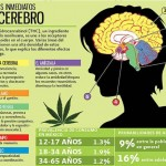 Marihuana: un mal que crece