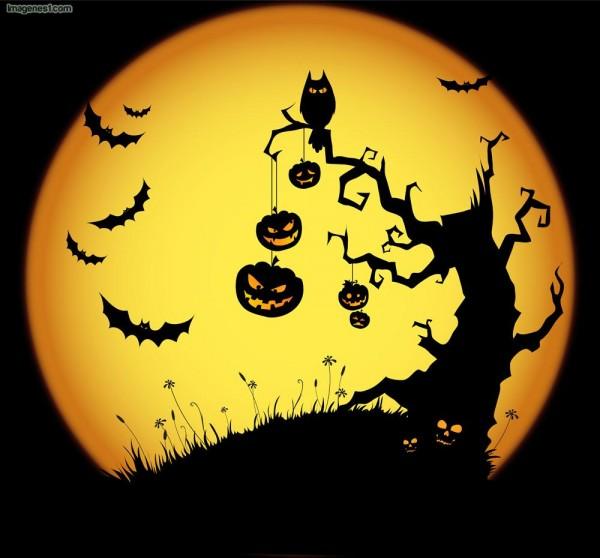 feliz-halloween-2245