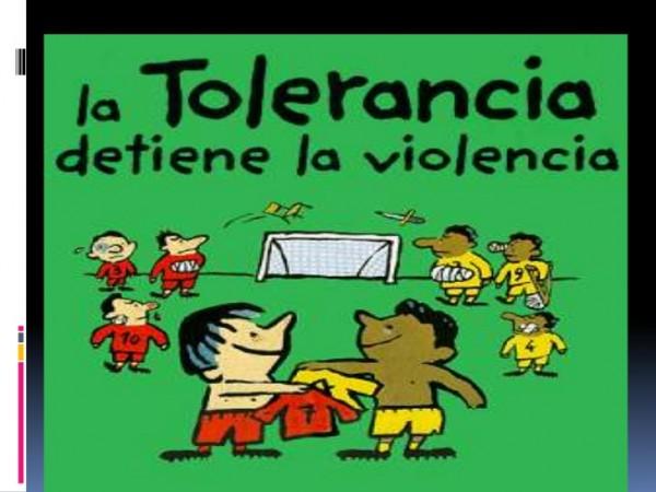 la-tolerancia-social-es-la-capacidad-de-aceptacin-5-728