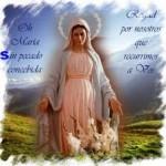 El dogma de la Inmaculada Concepcion