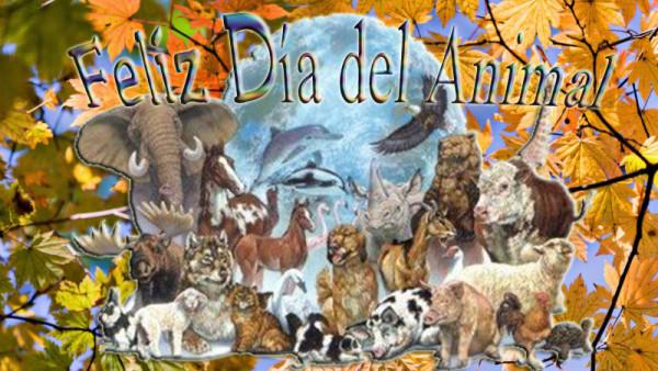 animalfrases-para-el-dia-del-animal-dia-del-animal-argentina
