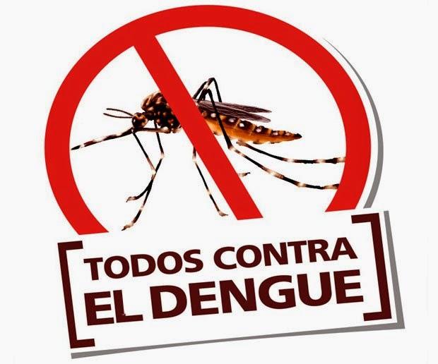 dengue.jpeg12