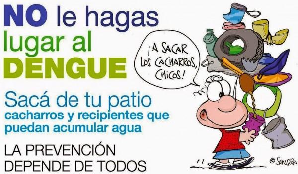 Alerta En Argentina Por La Propagación Del Dengue
