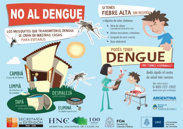 dengue.jpeg9