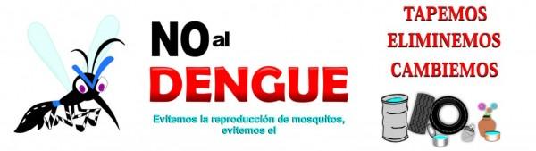 dengue29