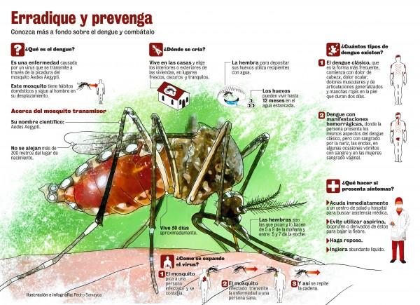 dengueinfo.jpg1 - copia