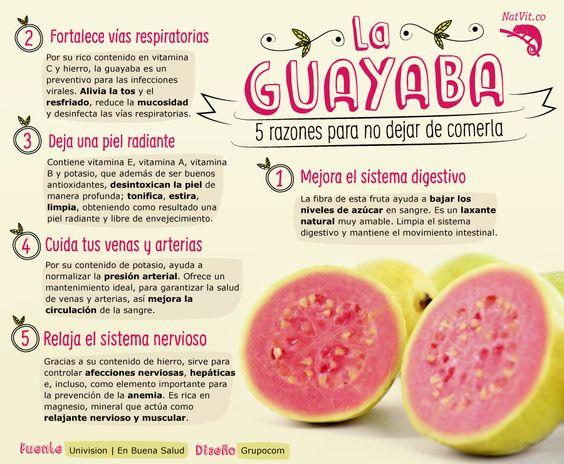 infoguayaba