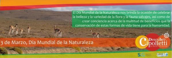 naturaleza5