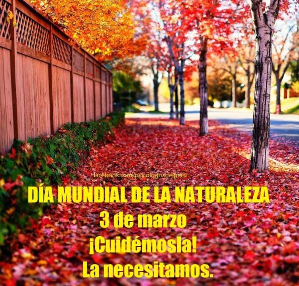 naturaleza7