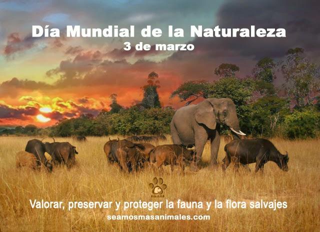 naturalezafrase1