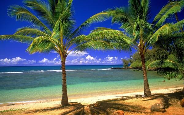 playas (2)