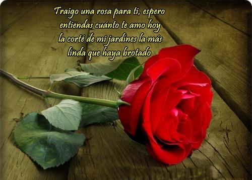 Imágenes bellas de corazones, ositos y flores con frases
