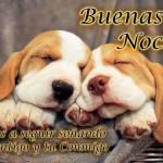 Memes chistosos e imágenes tiernas y bonitas para decir Buenos Días y Buenas Noches