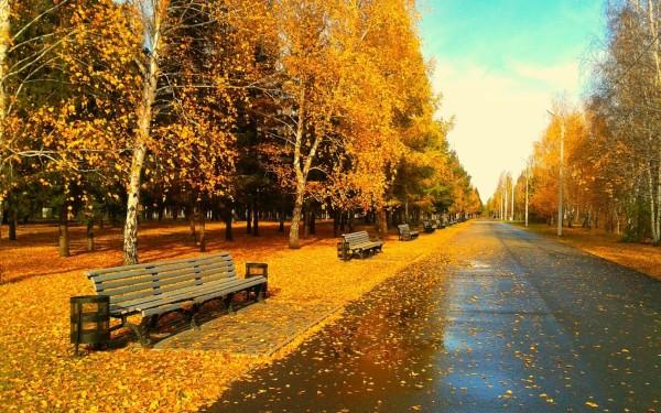 otoñoamarillento