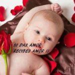 Imágenes hermosas de tiernos bebés con frases de Amor, de Buenos Días y de Buenas Noches