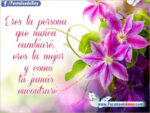 Imagenes Hermosas Con Flores Y Dedicatorias De Amor Para Compartir