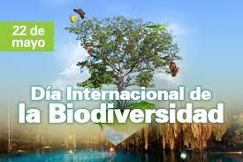 biodiversidad.jpe18