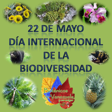 biodiversidad.jpe1