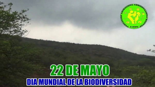biodiversidad.jpe25