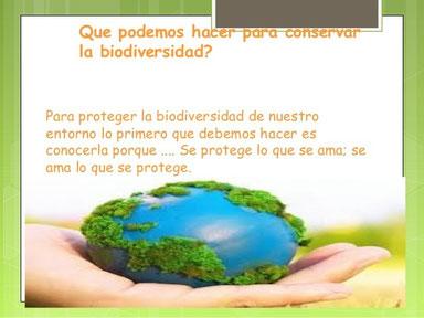 biodiversidadfrase.jpe11